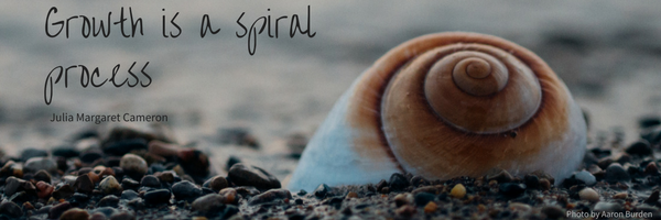 shell, spiral, growth is a spiral process